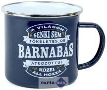 Top Pasik fémbögre, Barnabás